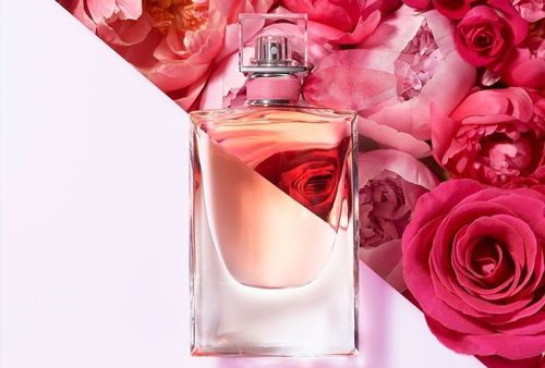 Best Celebrity perfumes