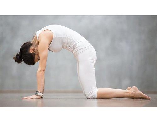 17_Best_Yoga_Asanas_For_Beginners