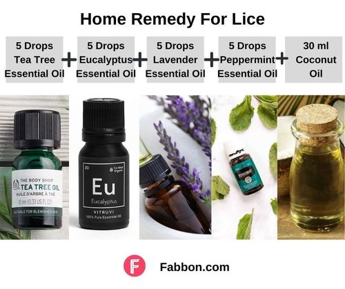 1_Home_Remedies_For_Lice