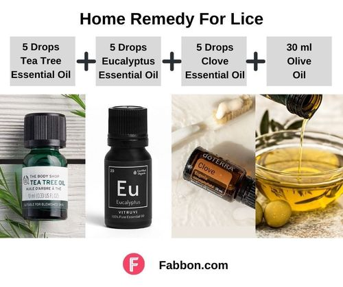 2_Home_Remedies_For_Lice