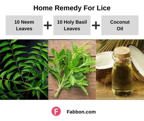 4_Home_Remedies_For_Lice
