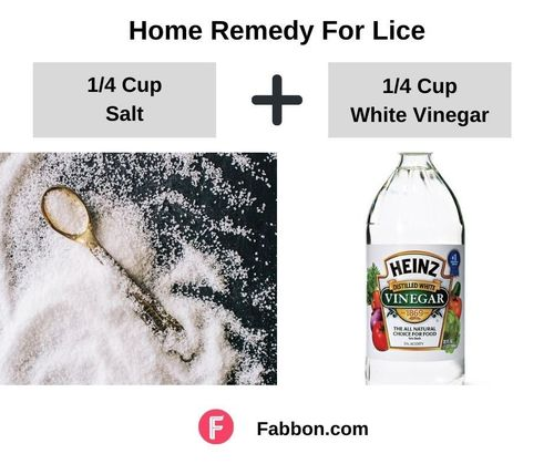 5_Home_Remedies_For_Lice