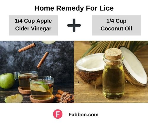 6_Home_Remedies_For_Lice