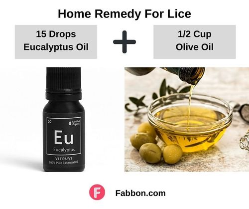 7_Home_Remedies_For_Lice