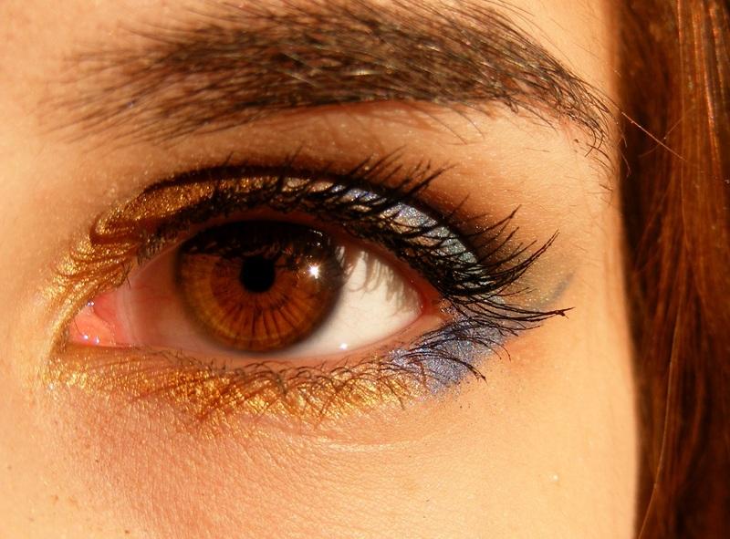 https://static.pexels.com/photos/46279/brown-brown-eyes-iris-gene-46279.jpeg