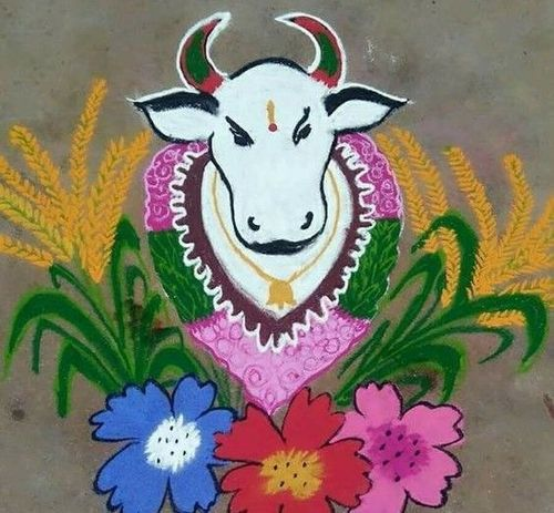Decorated-Cattle
