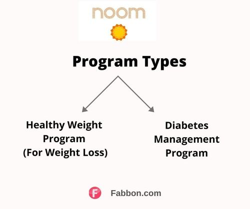 Noom-types of programs